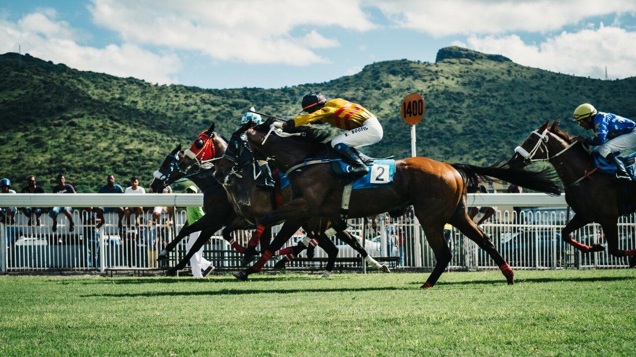 Horse Racing Statistics UK 2021 - How Popular is Horse racing in the UK?